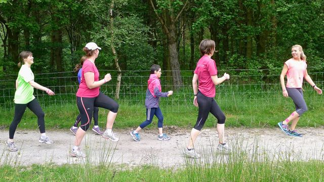 Jog Derbyshire Longshaw June 2014 - 030